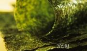 morske-rasy-p-1-prev